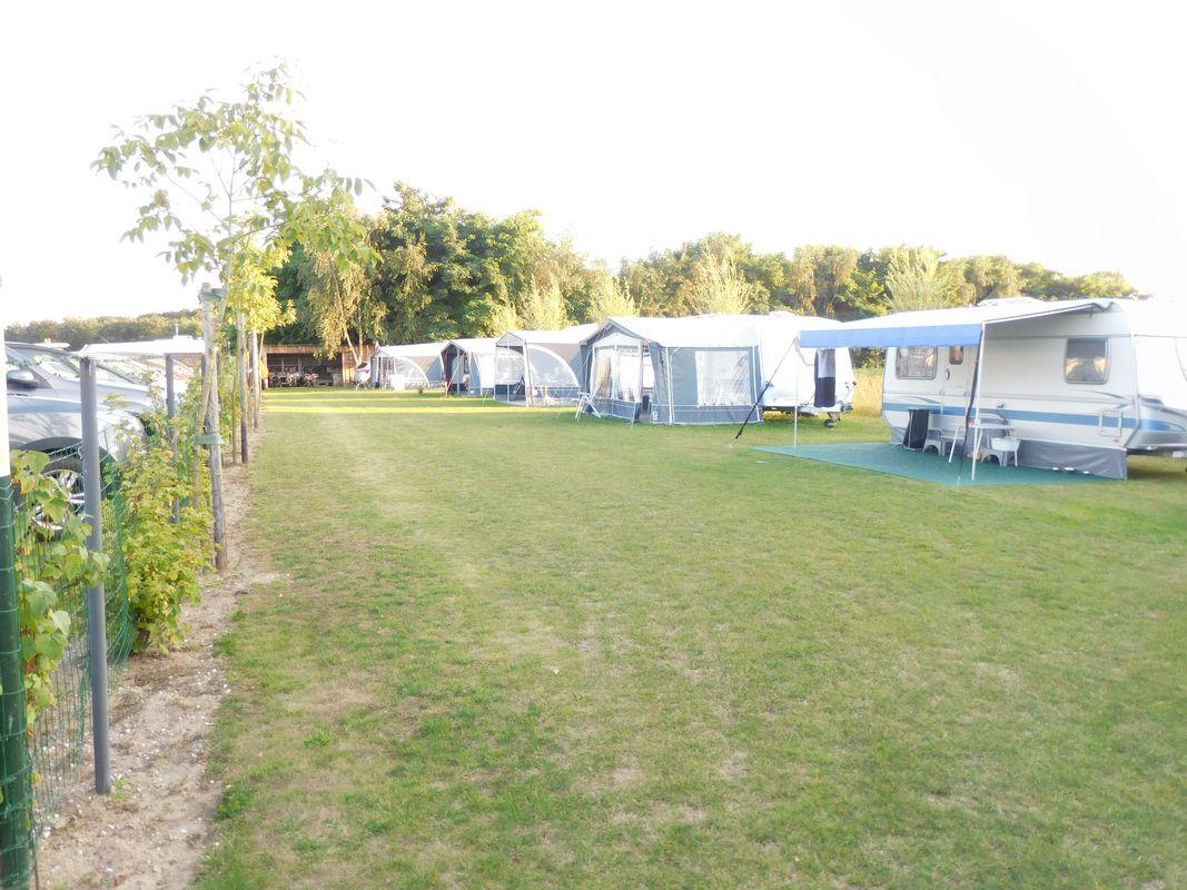 camping-t-0098.jpg